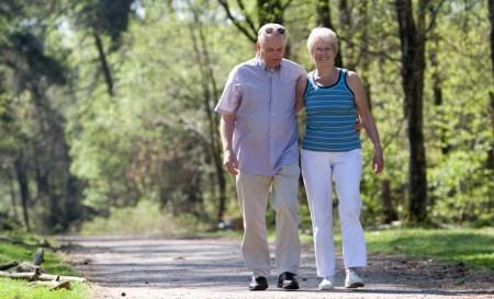 Значительно улучшить состояние здоровья можно длительными прогулками на свежем воздухе